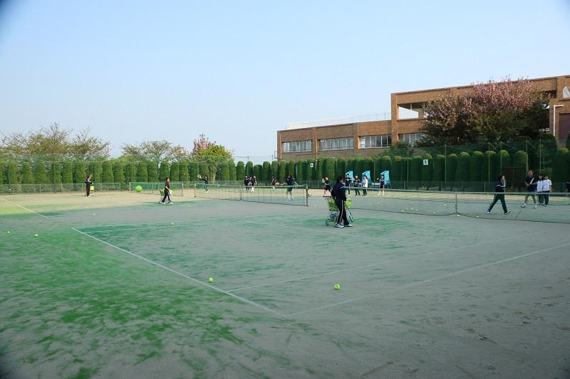 テニスA.jpg