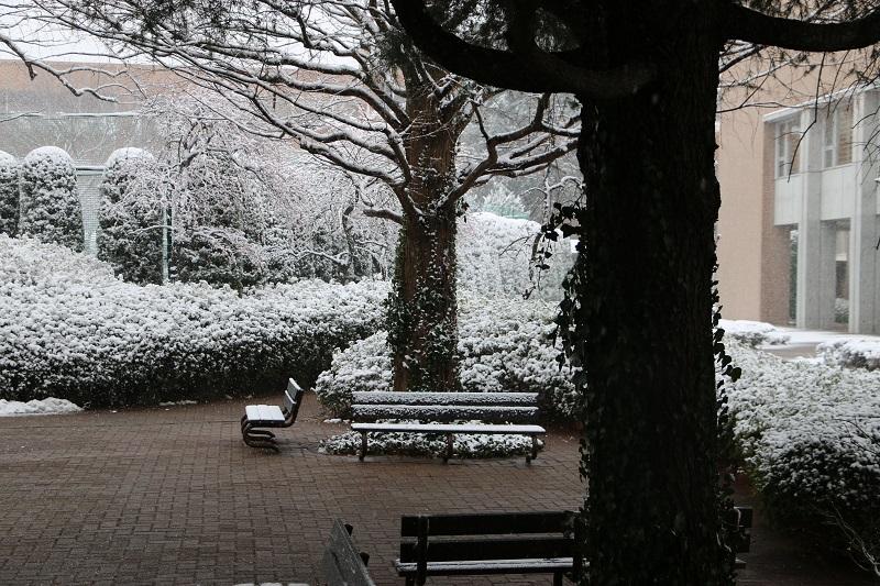 講堂前広場.17.jpg